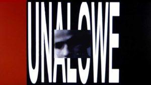 Stanley WE Video Unalowe